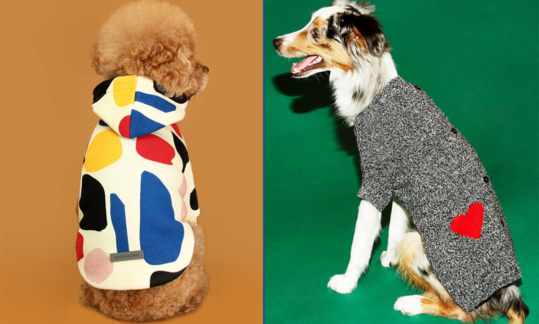 Get Your Pup More Instagram Followers with These 12 Warm and Stylish Dog Sweaters | NurturedPaws.com/Blog