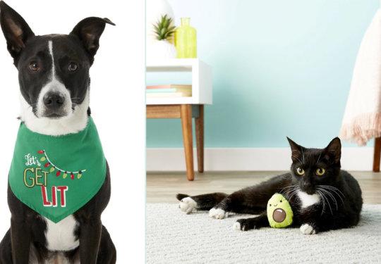 Gifts for Pets | NurturedPaws.com/Blog