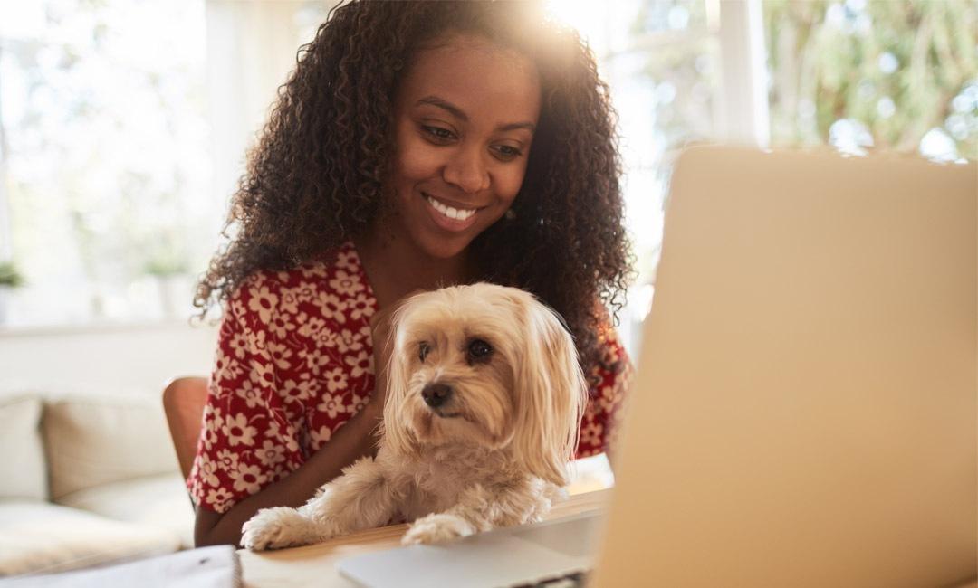 Work-Friendly Dog Gear For 'Take Your Dog to Work' Day | NurturedPaws.com/Blog