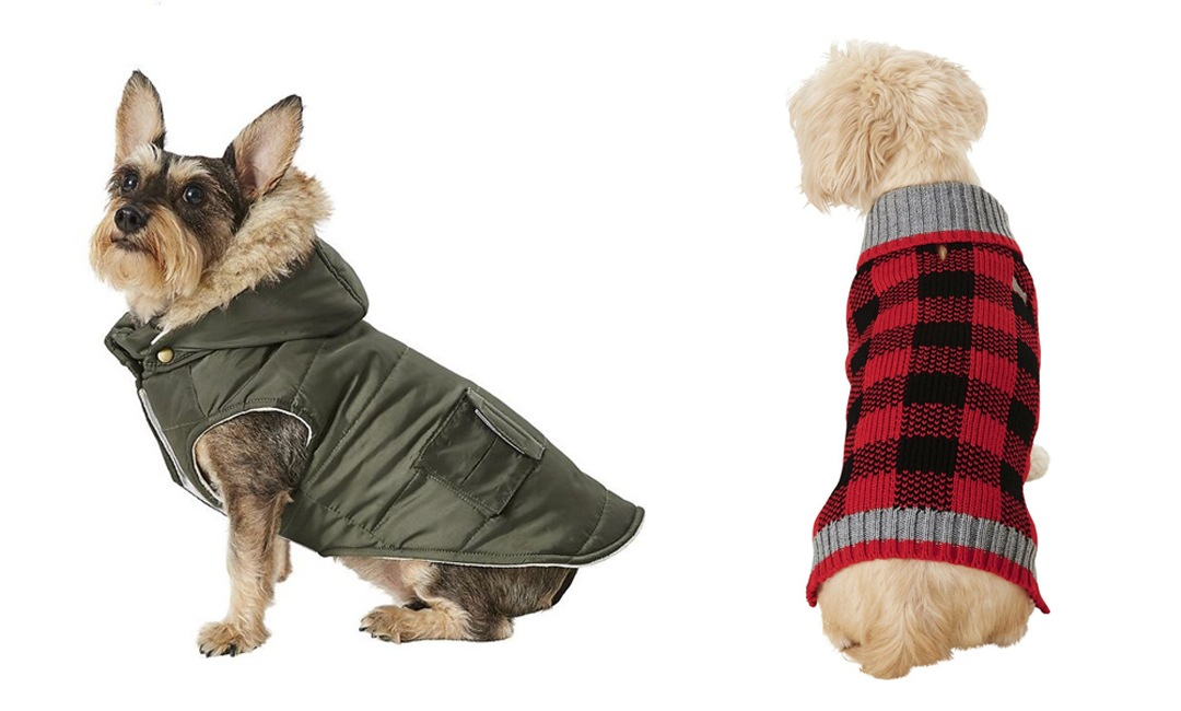 Doggy Accessories To Keep Your Pup Warm This Season | NurturedPaws.com/Blog