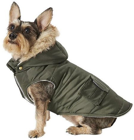 cozy dog accessories