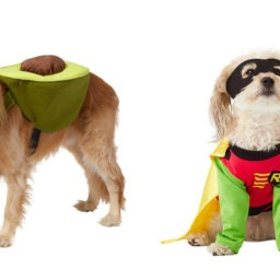 Our Favorite Halloween Pet Costumes From Chewy | NurturedPaws.com/Blog