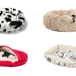 15 Cute Dog Beds We're Loving From Chewy | NurturedPaws.com/Blog