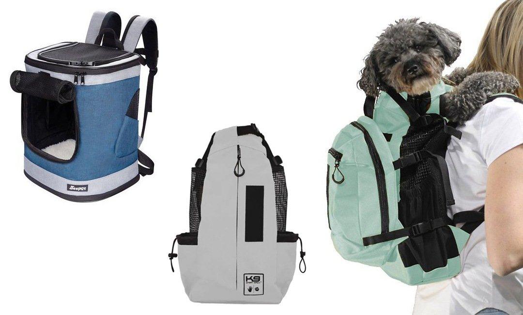 The Best Backpacks for Dogs   NurturedPaws.com/Blog