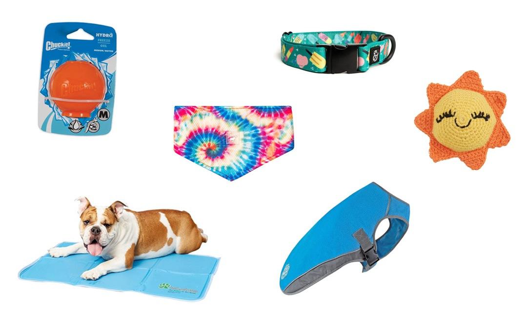 Summer Dog Essentials For The New Season | NurturedPaws.com/Blog