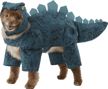Hilarious and Cute Dog and Cat Halloween Costumes from Chewy | NurturedPaws.com/Blog