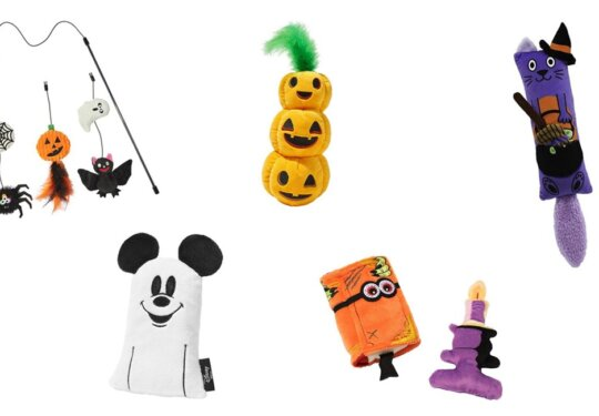 Halloween-Themed Cat Toys We're Shopping Now | NurturedPaws.com/Blog