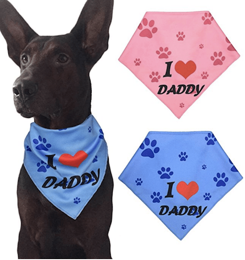 6 Gifts Dog Dads Will Love | NurturedPaws.com/Blog