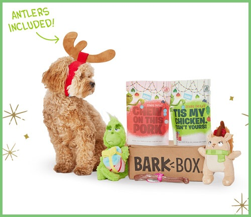 8 Gifts for Your Dog | NurturedPaws.com/Blog